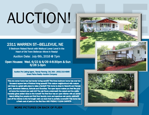 Auction 1_500