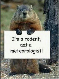 Im a_rodent_not_a_meteorologist